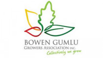 Logo for Bowen Gumlu Growers Association